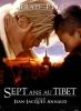 Sept ans au Tibet (Seven Years in Tibet)