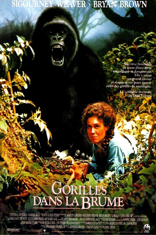 affiche du film Gorilles dans la brume