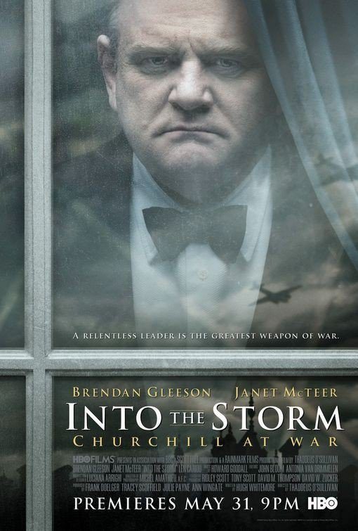 affiche du film Au cœur de la tempête (TV)