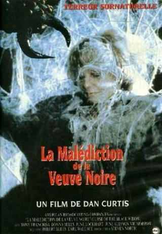 affiche du film La malédiction de la veuve noire (TV)