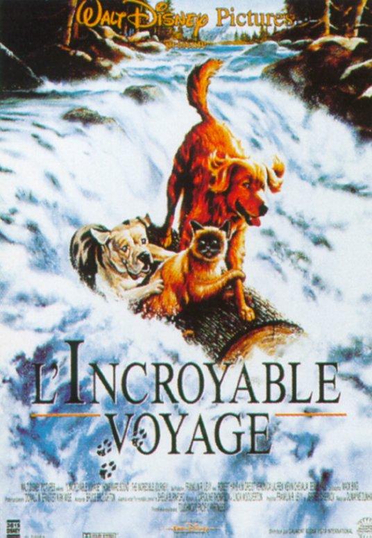 affiche du film L'incroyable voyage
