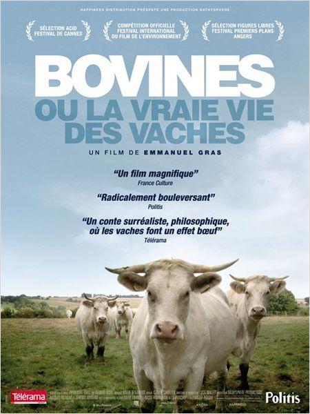 affiche du film Bovines ou la vraie vie des vaches
