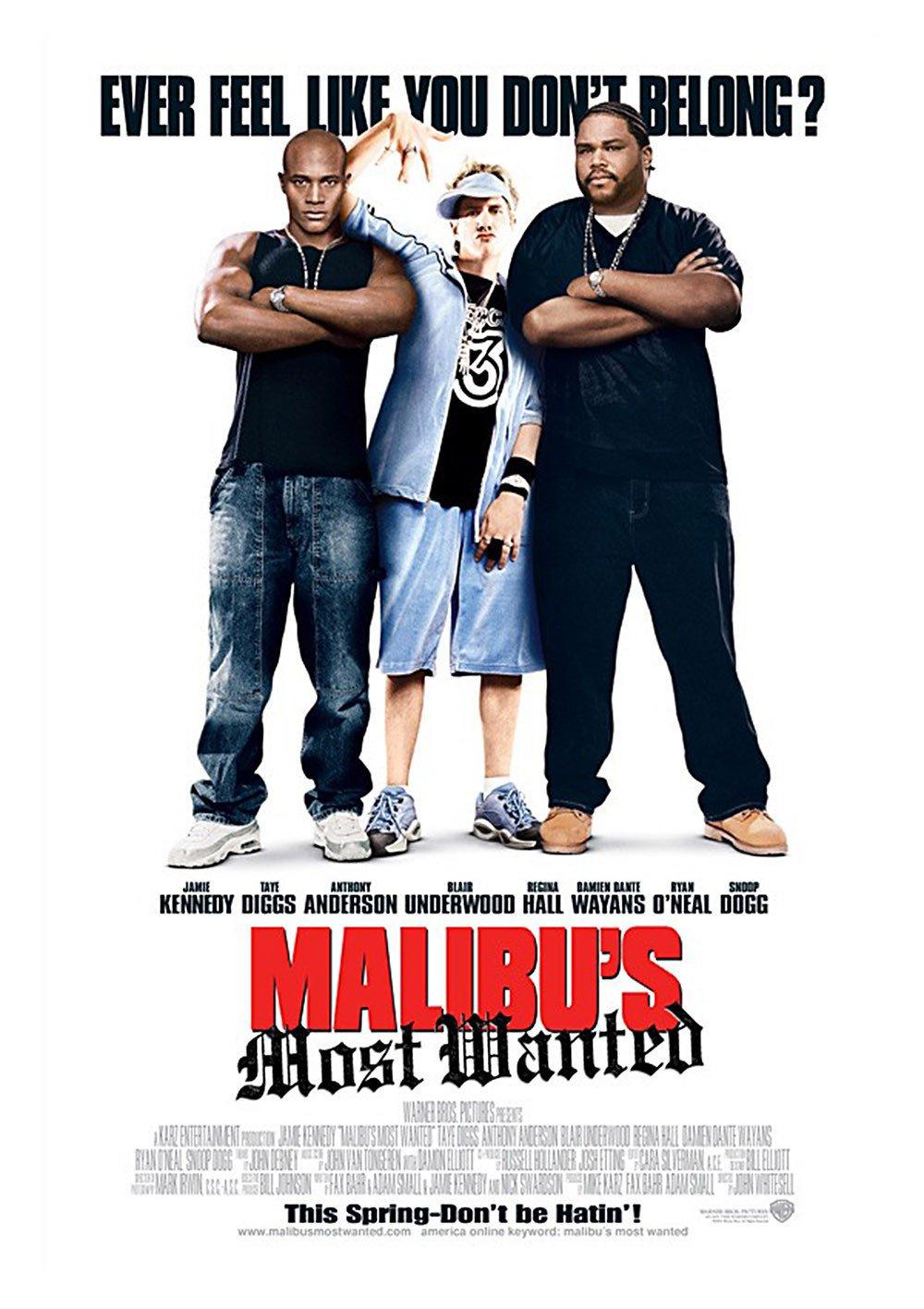 affiche du film Le rappeur de Malibu