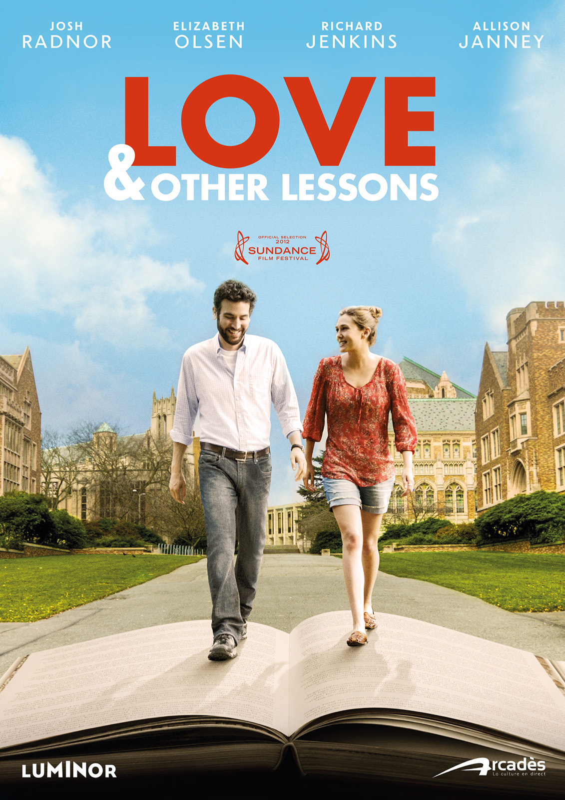 affiche du film Love and Other Lessons