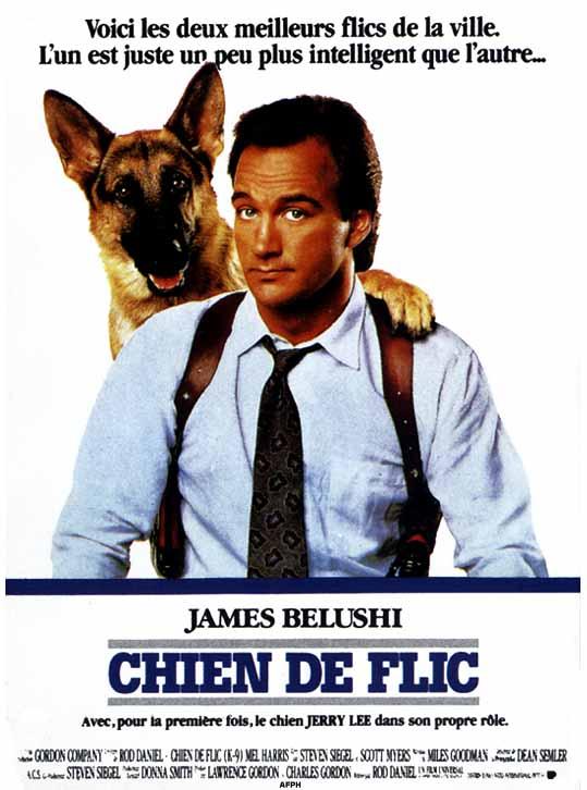 affiche du film Chien de flic