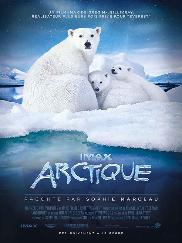 affiche du film Arctique