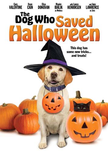 affiche du film Le sauveur d'Halloween (TV)