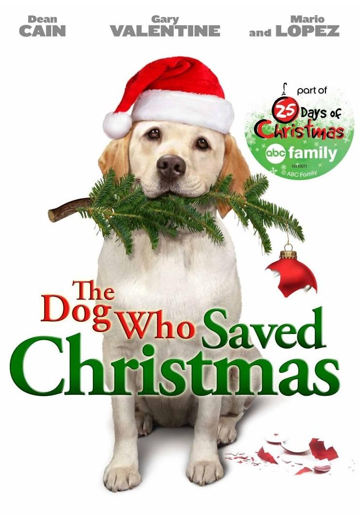 affiche du film Le chien de Noël (TV)