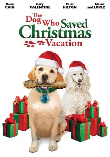 affiche du film Le sauveur de Noël (TV)