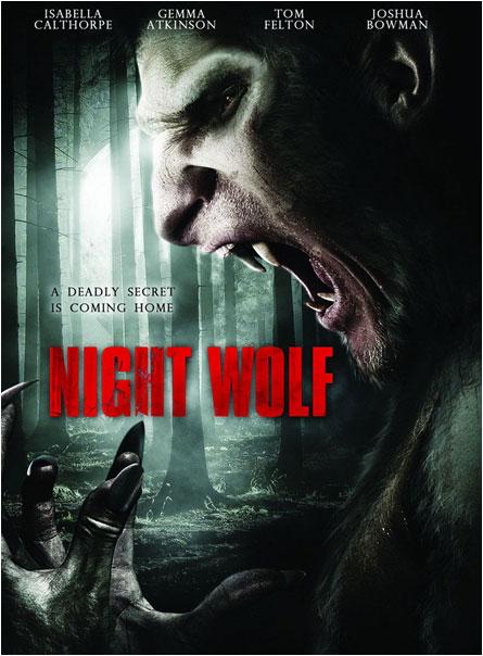 affiche du film Night Wolf