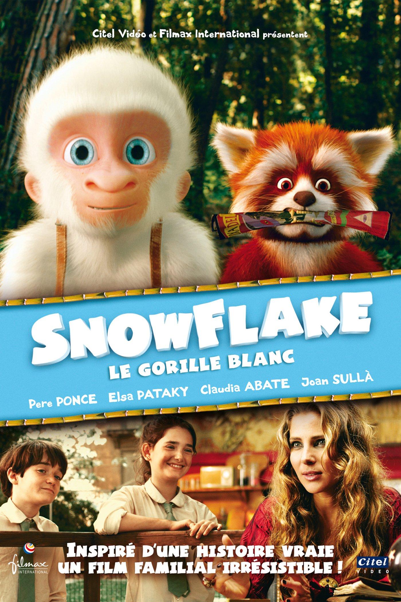affiche du film Snowflake, le gorille blanc
