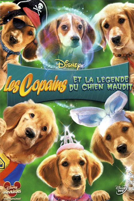 affiche du film Les Copains et la légende du chien maudit