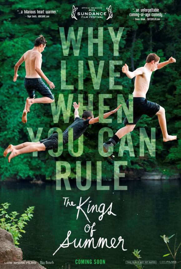 affiche du film The Kings of Summer