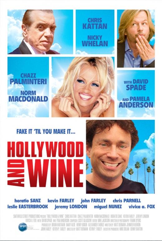 affiche du film Hollywood & Wine