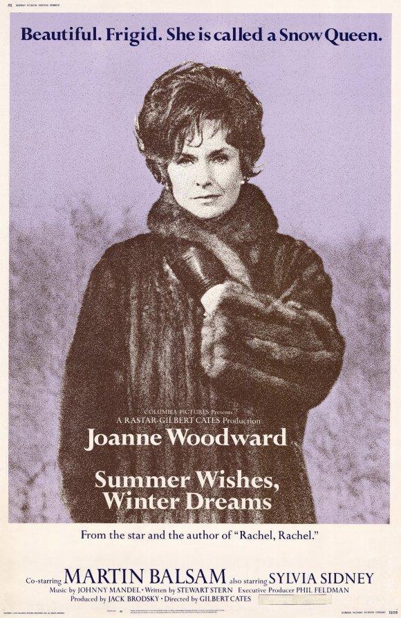 affiche du film Summer Wishes, Winter Dreams