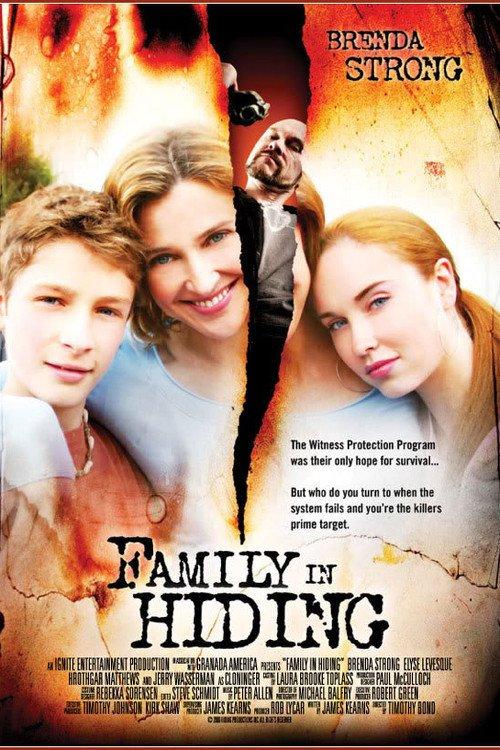 affiche du film Une famille en cavale (TV)