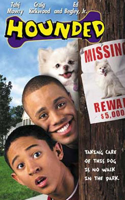 affiche du film Un chien envahissant