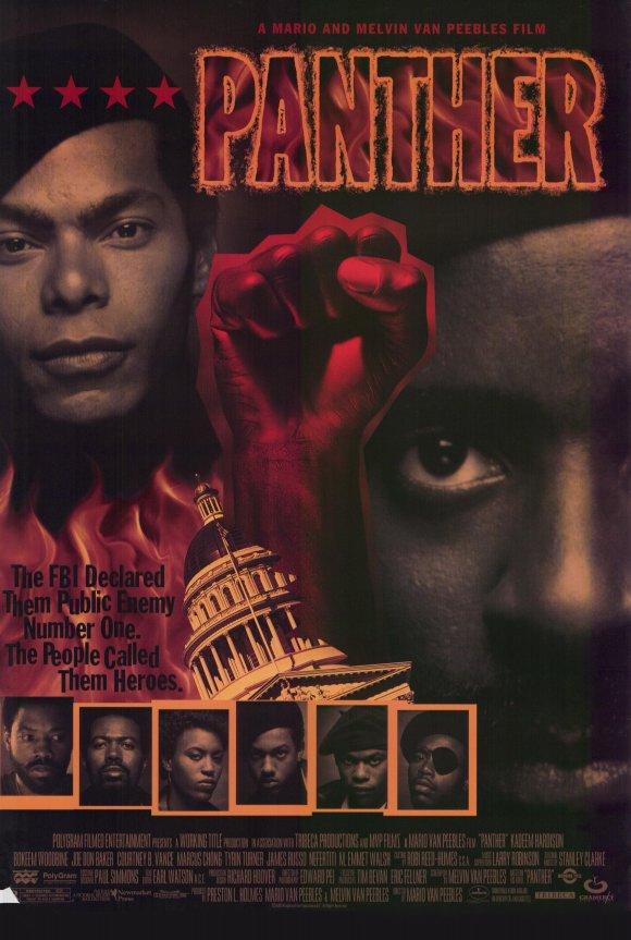 affiche du film Panther
