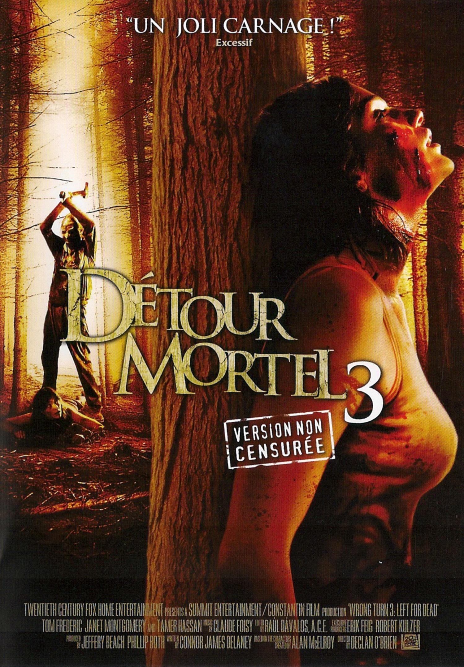 affiche du film Détour mortel 3