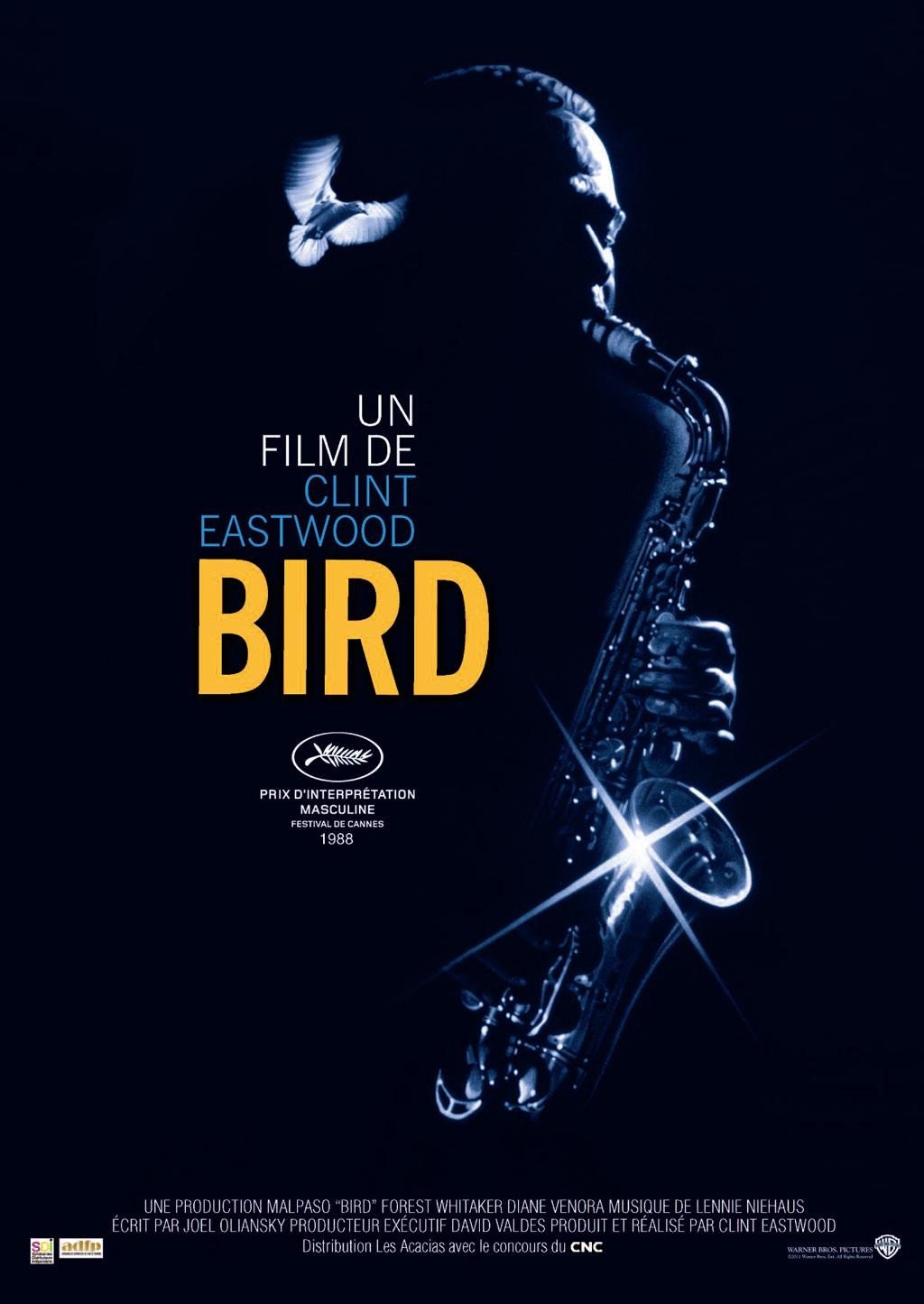 affiche du film Bird
