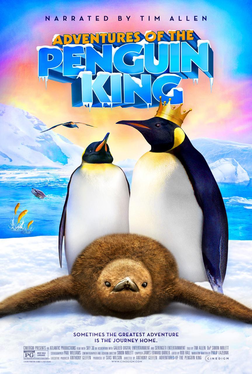 affiche du film Adventures Of The Penguin King