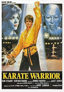 affiche du film Karaté Warrior