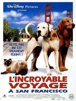 affiche du film L'incroyable voyage à San Francisco