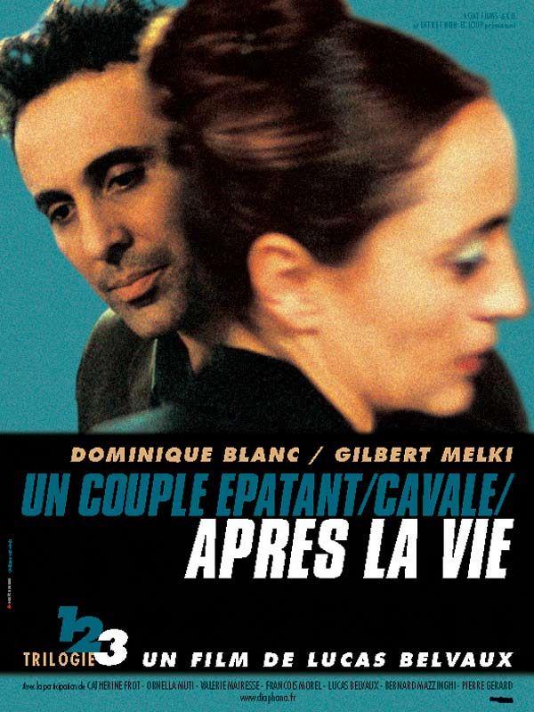 affiche du film Après la vie