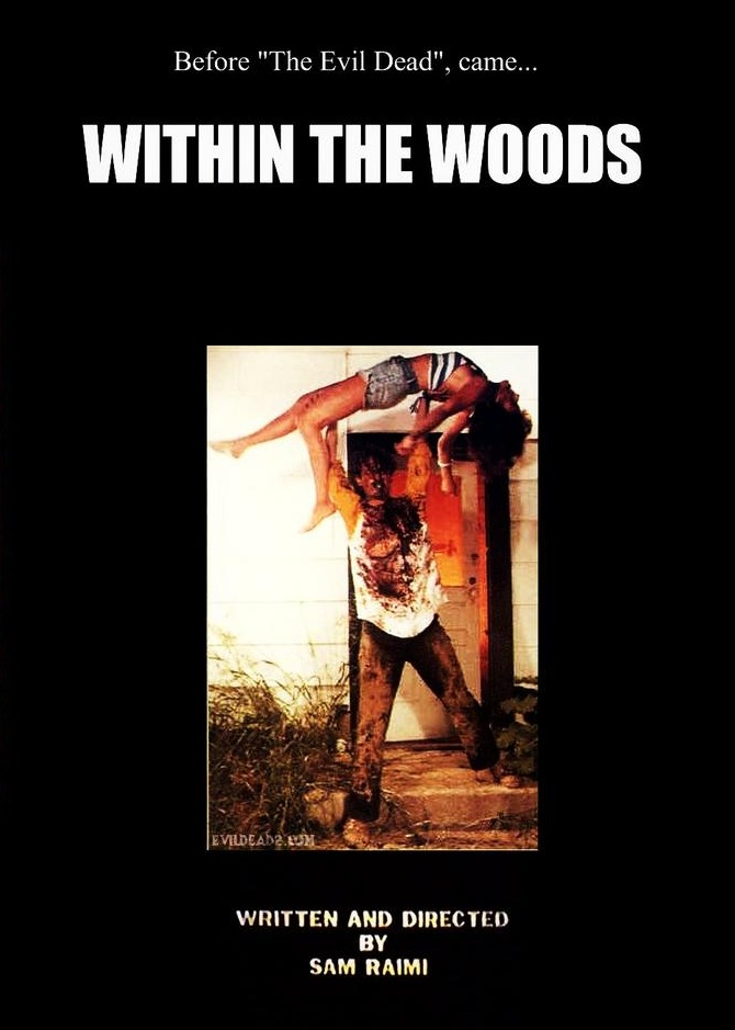 affiche du film Within the woods