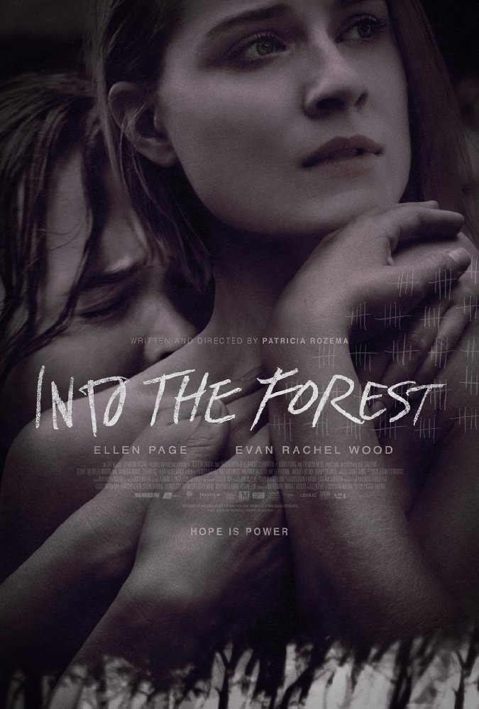 affiche du film Into the Forest