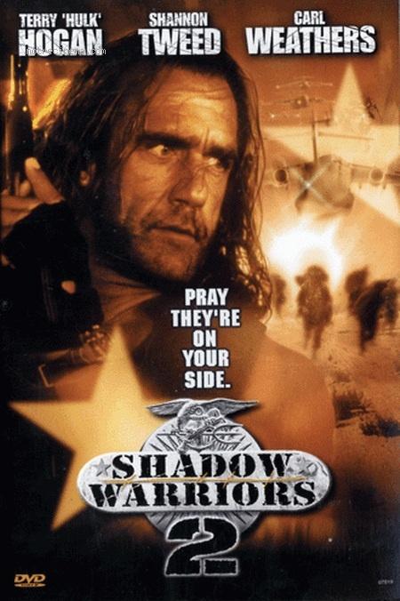 affiche du film Les Guerriers de l'ombre 2 (TV)