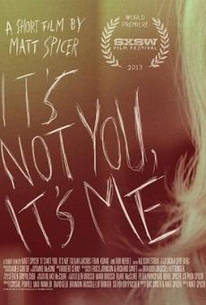 affiche du film It's Not You, It's Me