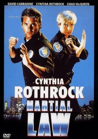 affiche du film La loi des arts martiaux