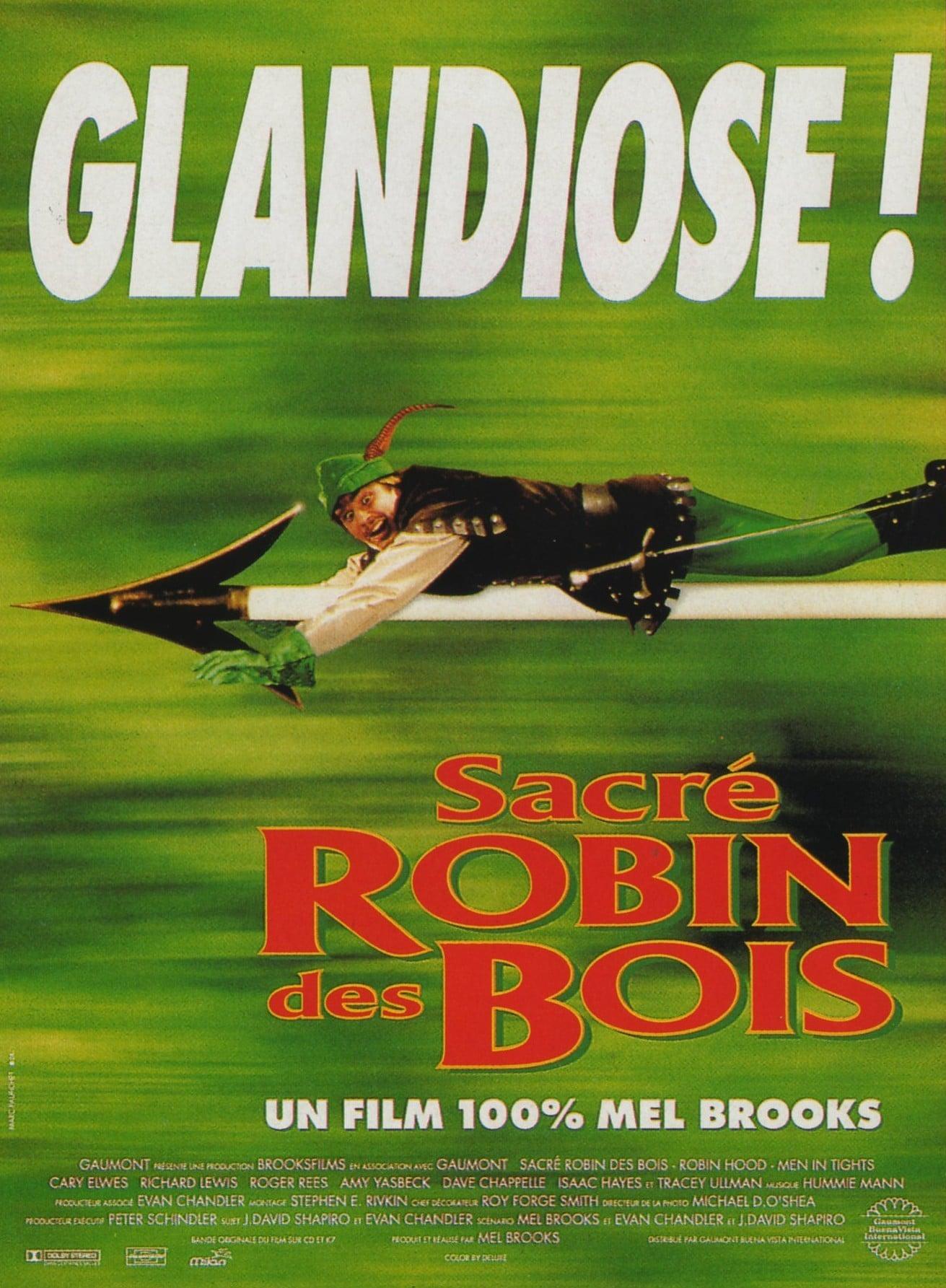 affiche du film Sacré Robin des Bois