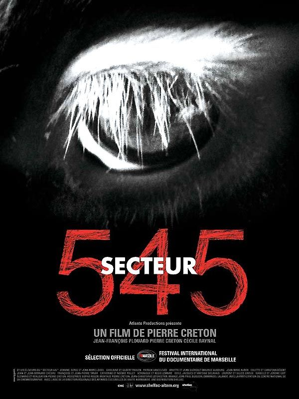 affiche du film Secteur 545
