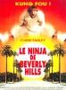 Le ninja de Beverly Hills (Beverly Hills Ninja)