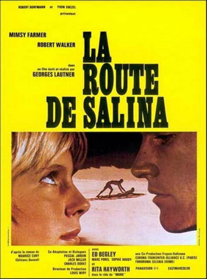 affiche du film La Route de Salina