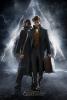 Les Animaux Fantastiques 2 : Les Crimes de Grindelwald (Fantastic Beasts 2: The Crimes of Grindelwald)