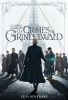 Les Animaux Fantastiques 2 : Les Crimes de Grindelwald (Fantastic Beasts 2: The Crimes of Grindelwald)