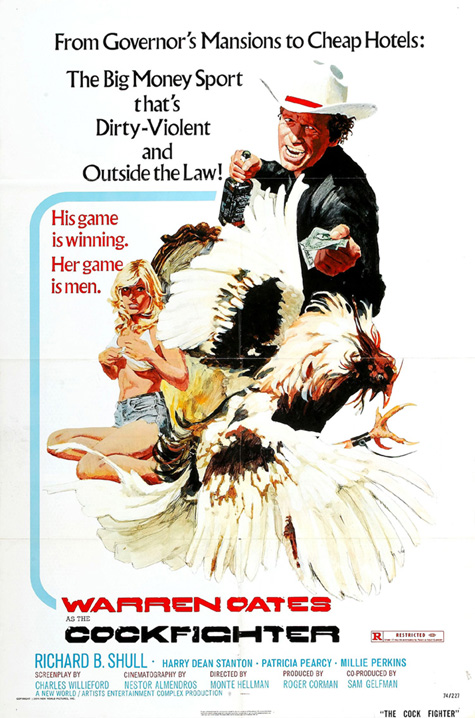 affiche du film Cockfighter