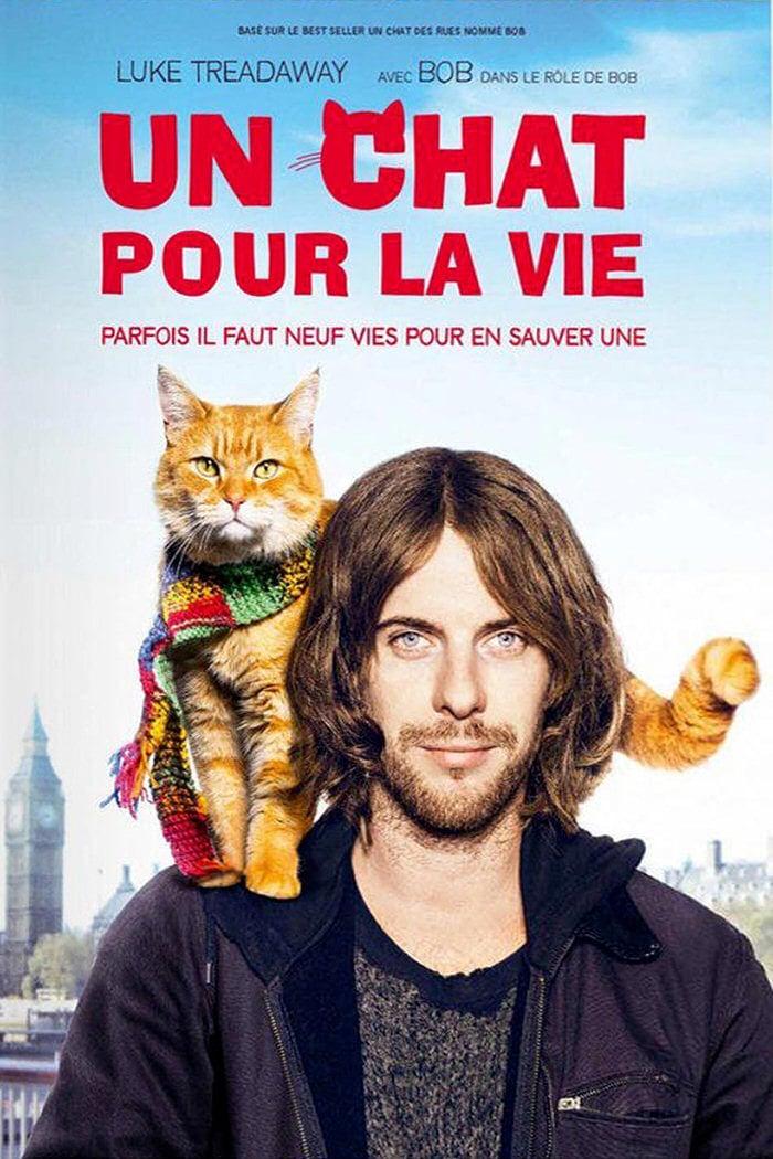 affiche du film Un chat pour la vie