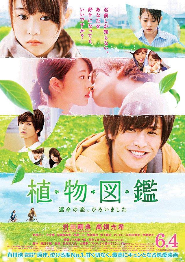 affiche du film Evergreen Love