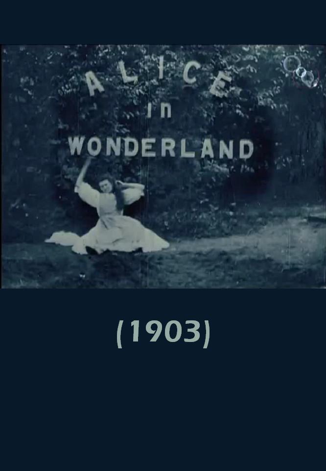 affiche du film Alice au pays des merveilles