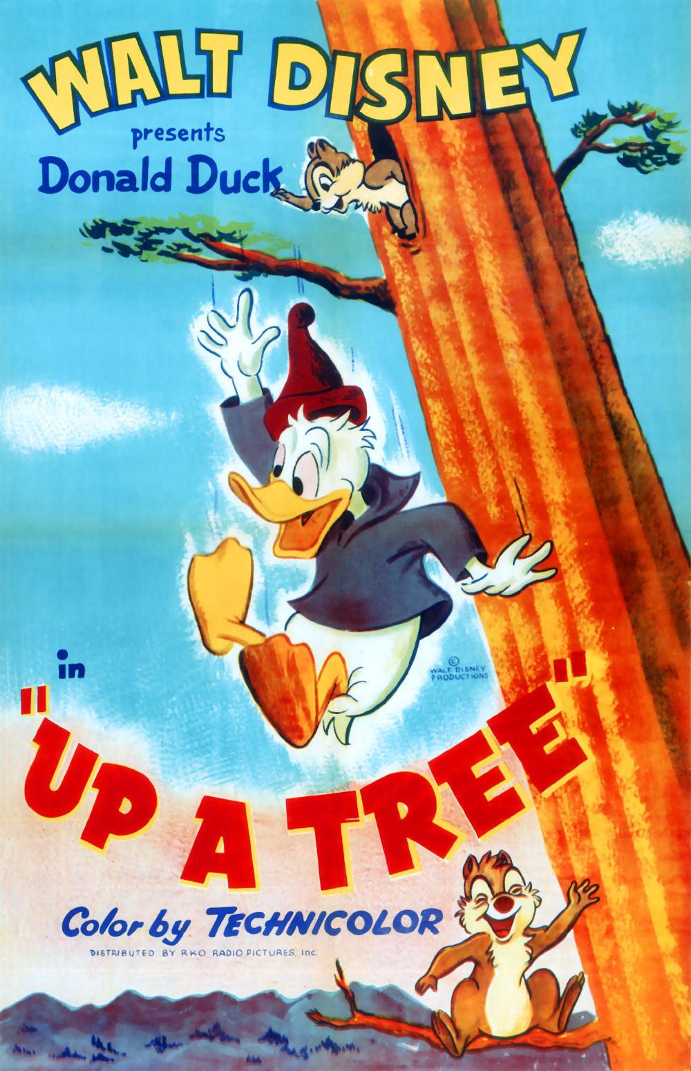 affiche du film Donald Flotteur de Bois