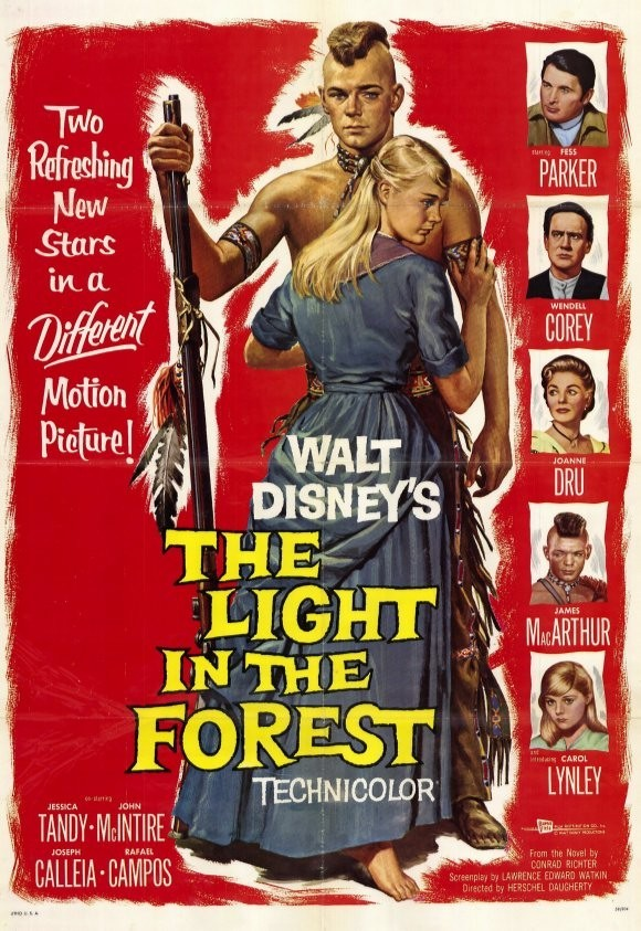 affiche du film Lueur Dans la Forêt