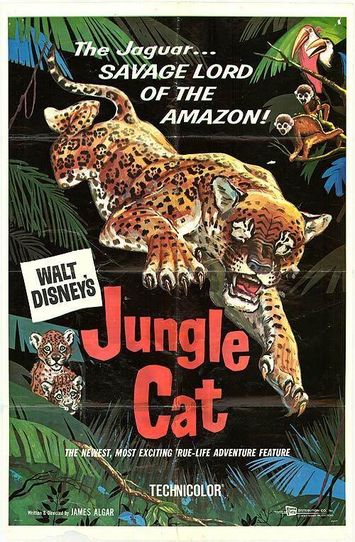 affiche du film Le Jaguar, seigneur de l'Amazone