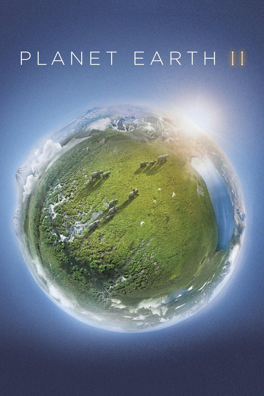 affiche du film Planète Animale