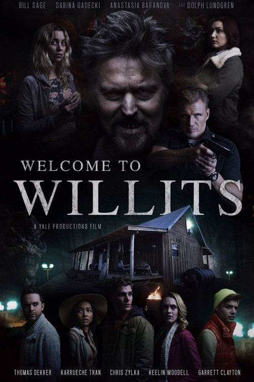 affiche du film Welcome to Willits