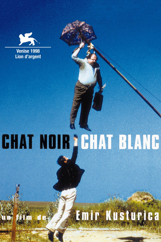 affiche du film Chat noir, chat blanc