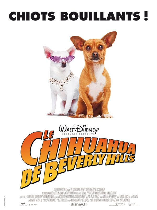 affiche du film Le chihuahua de Beverly Hills
